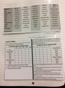 ISN Vocab Data Sheets