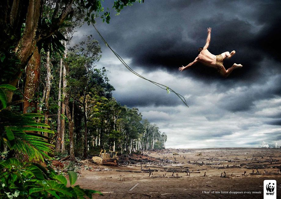 wwf-rainforest-advertisement